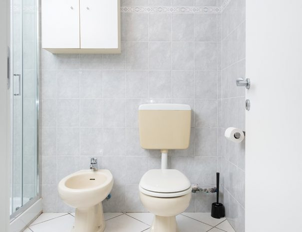 WC and bidet near the shower