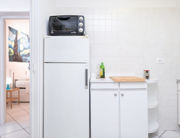 A white fridge and black electrical oven